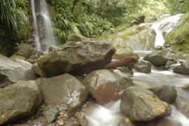 - Parc national de la Guadeloupe